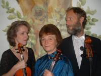 Dutch String Trio